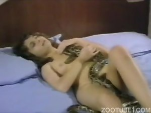 Passionate innocent girl is trying to bang with a spotty python