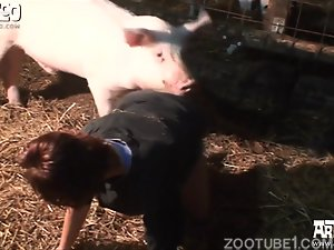 Submissive redhead zoofile is trying farm sex with pig