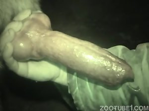 This nasty beast has a truly incredibly huge cock